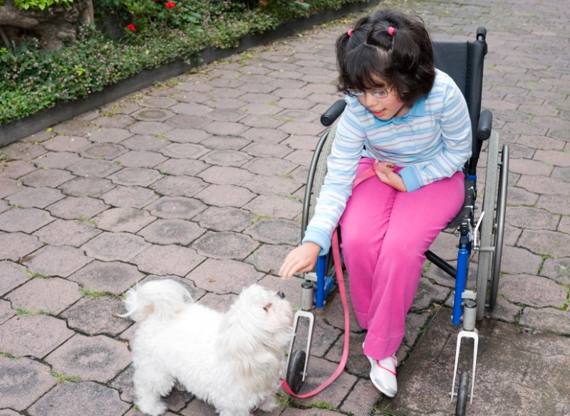 Pets Help Kids With Disabilities In So Many Ways!