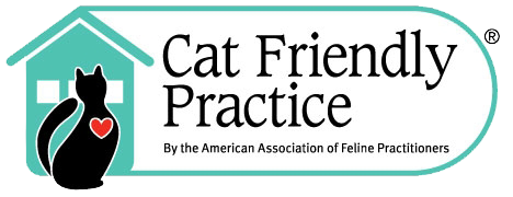 Cat-Friendly Practice